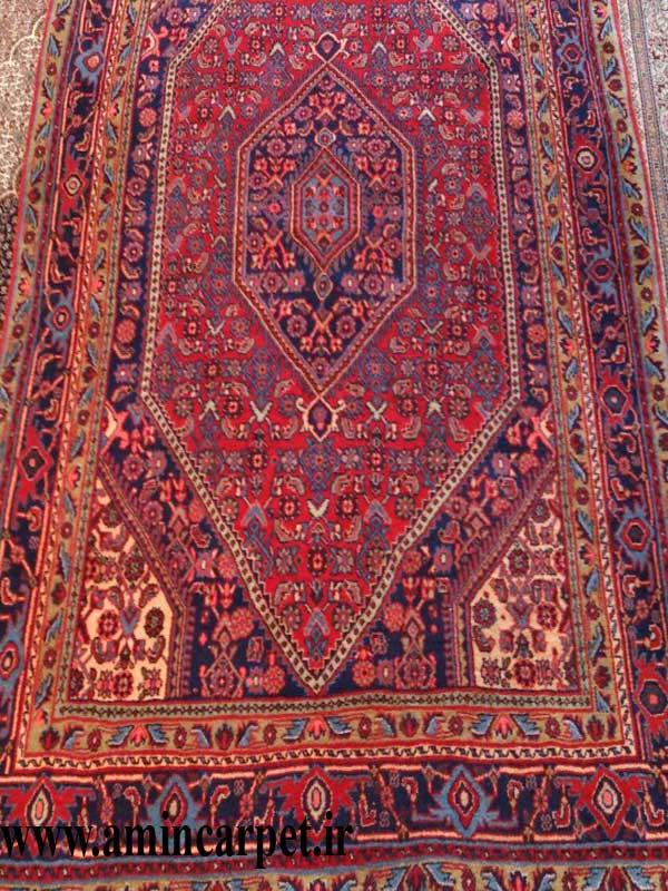 قالیچه بیجار نقشه افشار